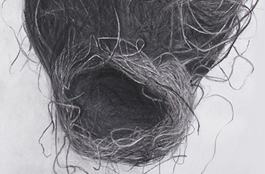 Bird's Nest V - Nature drawing, realism in charcoal Singapore art class