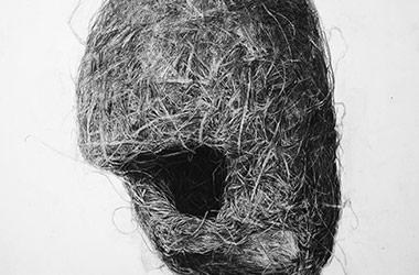 Bird Nest No.2 - Nature drawing, realism in charcoal, Singapore art class and art scene