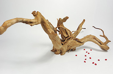 Driftwood No.1 by NAFA alumni artist. Art guide to fine art in Singapore contemporary photography art prints centred on experimental photography, urban art, installation art and fine art curriculum academic studio practice in Singapore contemporary arts scene, art space and art culture
