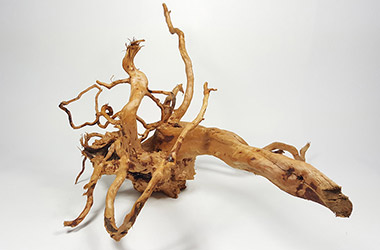 Driftwood No.3 by NAFA alumni artist. Art guide to fine art in Singapore contemporary photography art prints centred on experimental photography, urban art, installation art and fine art curriculum academic studio practice in Singapore contemporary arts scene, art space and art culture