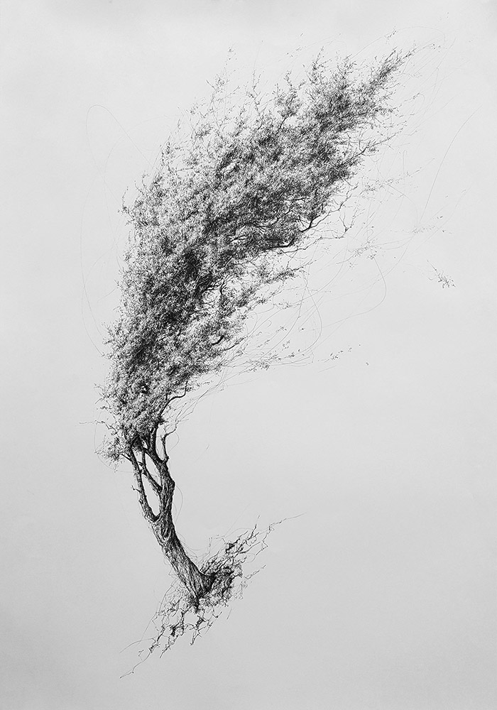 tree no 5 contemporary art for sale art is gallery