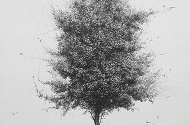 Tree No.4  - Pen Drawing by Singapore contemporary artist Liu Ling