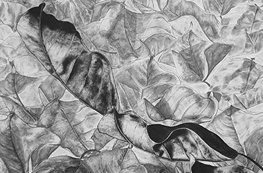 Leaves - overlapping drawing - Singapore art class and arts scene. Beautiful artwork by Singapore contemporary artist