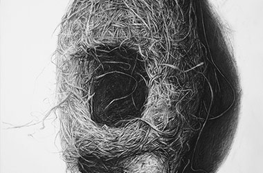 Bird Nest No.1 - Nature drawing, realism in charcoal, Singapore art class and art scene. Beautiful artwork by Singapore contemporary artist