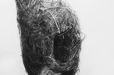 Bird Nest No.10 - Nature drawing, realism in charcoal, Singapore art class and art scene. Beautiful artwork by Singapore contemporary artist