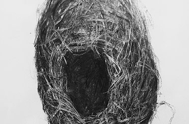 Bird Nest No.11 - Nature drawing, realism in charcoal, Singapore art class and art scene. Amazing artwork by Singapore contemporary artist