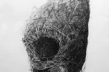 Bird Nest No.9 - Nature drawing, realism in charcoal, Singapore art class and art scene. Beautiful artwork by Singapore contemporary artist