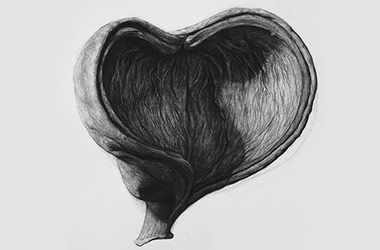 Organic Shape No.4 - Nature drawing, realism in charcoal, Singapore art class and art scene. Beautiful artwork by Singapore contemporary artist