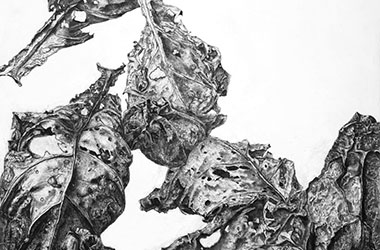 Fallen Leaves - overlapping drawing - Singapore art class and arts scene. Beautiful artwork by Singapore contemporary artist