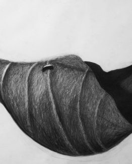 Charcoal on paper, 70 x 100 cm